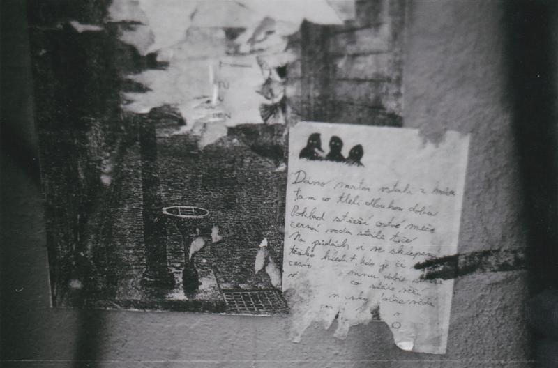Foglarova Stínadla  (13)