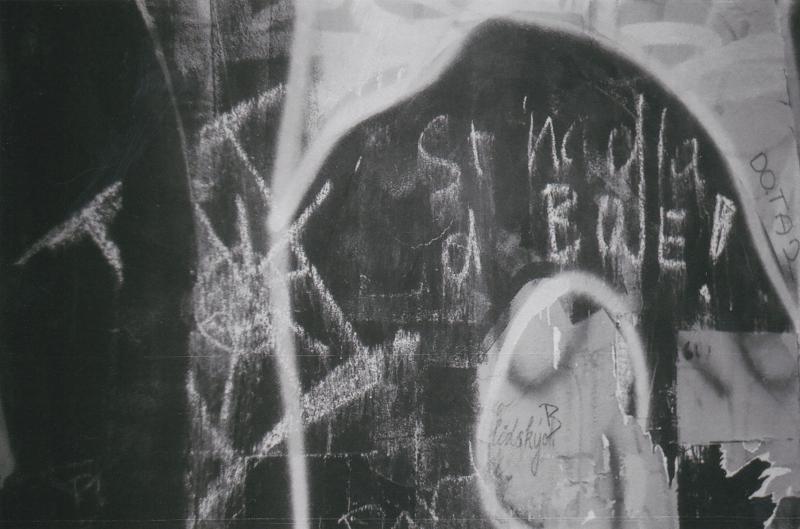 Foglarova Stínadla  (14)