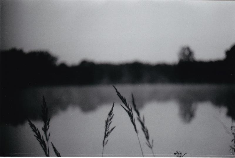 Jarní (5)