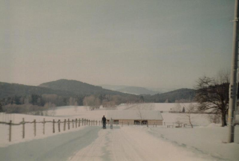 Novohradské hory, Zima 2019